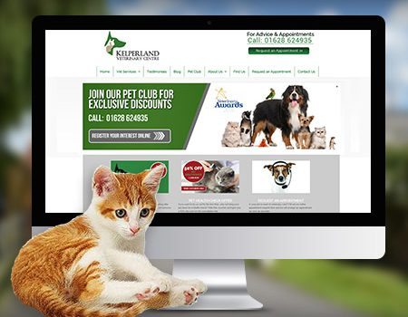 vet website design